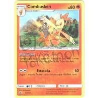 Combusken 5/70 - Dragões Soberanos - Card Pokémon