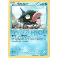 Shellder 23/122 - Turbo Colisão - Card Pokémon