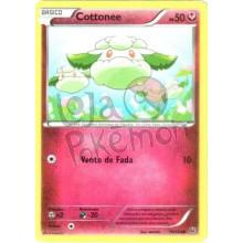 Cottonee 70/124 - Fusão de Destinos