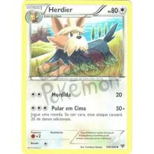Herdier 109/146 - X Y